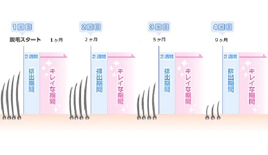 schedule for the hair removal